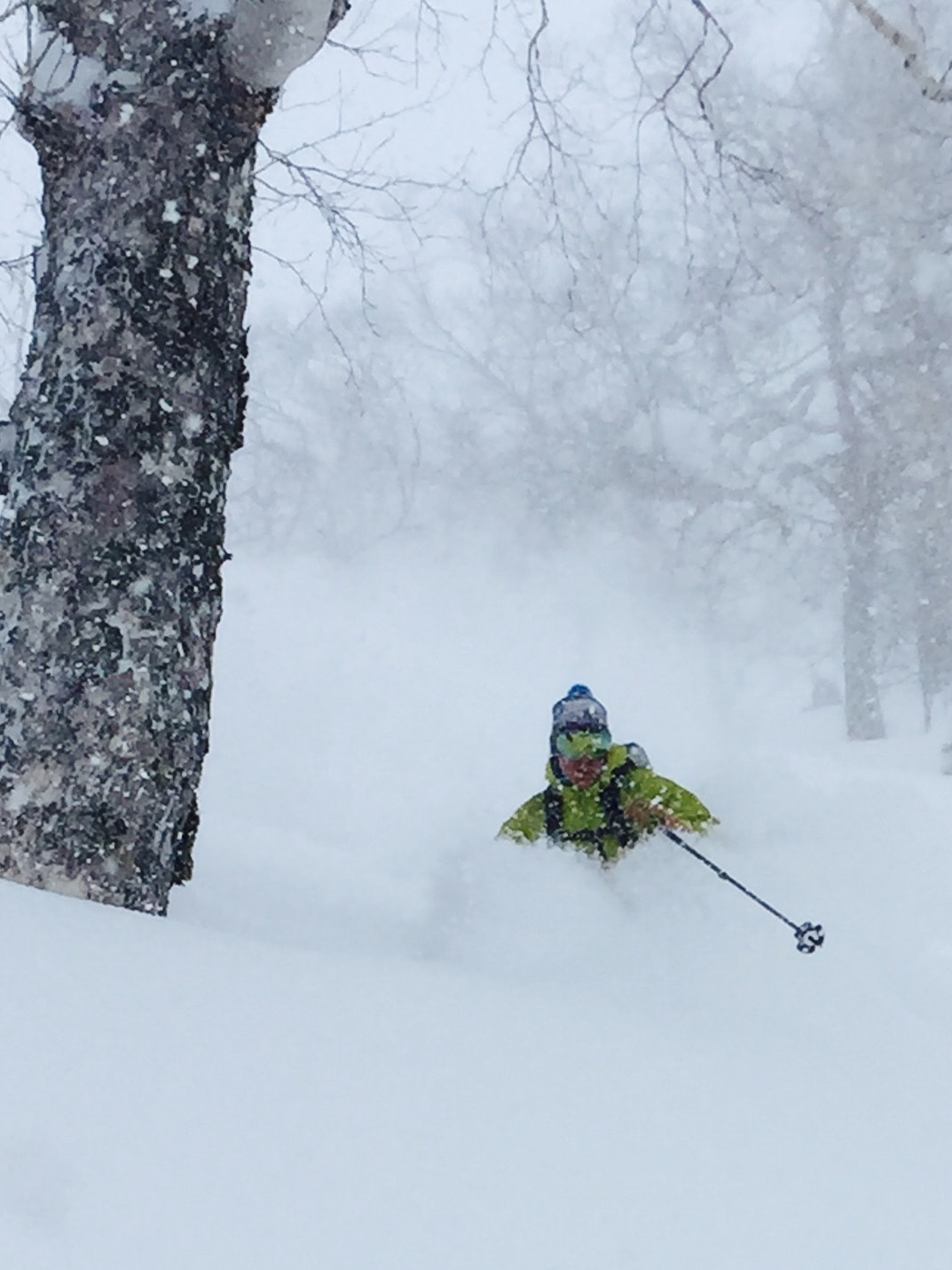 Colorado Mountain School Guide Dave Wolf skiing in deep powder in the backcountry of Hokkaido, Japan