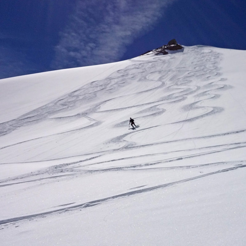 A backcountry skier makes turns in powder on a guided tour of the Haute Route.