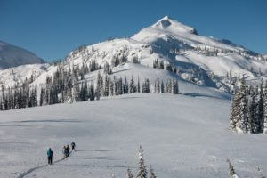 Avalanche Rescue training.