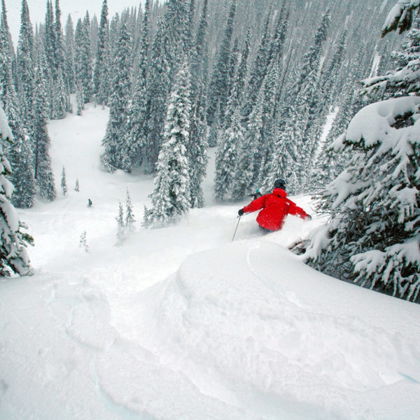 A backcountry skiier shreds deep powder on a snowy day in Colorado.