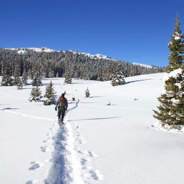 An outdoor enthusiast goes snowshoeing on a guided tour in Estes Park, Colorado.