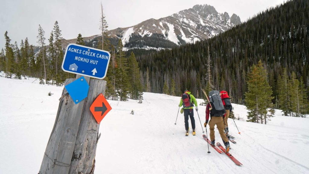 A group of backcountry skiers skin toward Agnes Creek Cabin and Nokhu Hut on Cameron Pass.