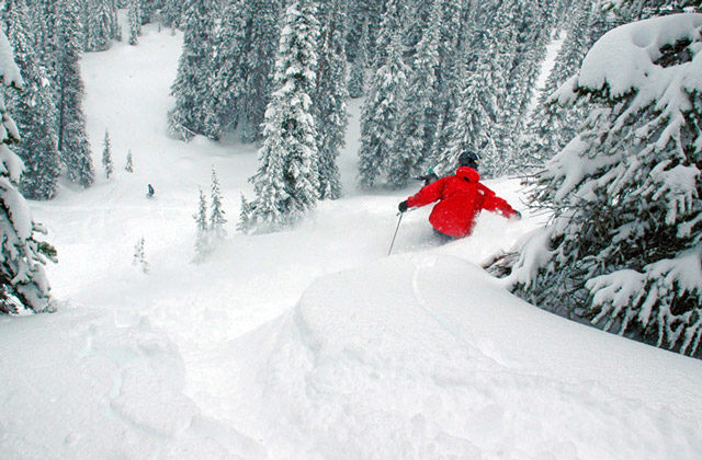 A backcountry skiier makes a turn in deep powder during a guided backcountry skiing trip in Colorado.